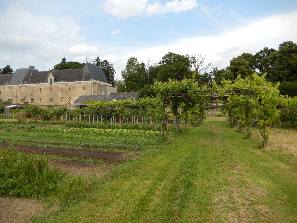 Le Potager du Château 4 - Challain-la-Potherie