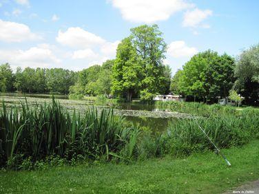 Plan d'eau - Challain-la-Potherie
